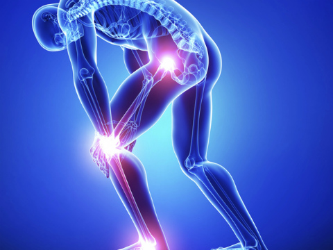 Глюкозамин и Хондроитин - незаменимые средства для здоровых суставов и красивой кожи