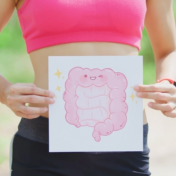 рисунок кишечника