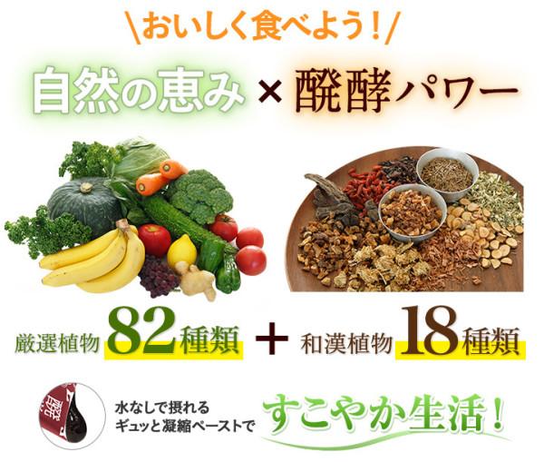 Экстракт ферментированных растений DHC Fermented Wakan Misato