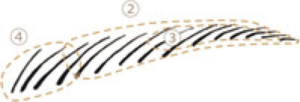 Тени для век и бровей Lunasol STYLING EYEZONE COMPACT